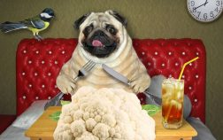Can Dogs Have Cauliflower Rice For Dinner